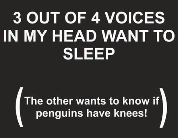 189673-3-Out-Of-Voices-In-My-Head-Want-To-Sleep-But-The-Other....jpg