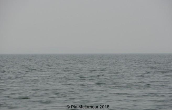 WaterMark_2018-03-21-23-55-45.JPG